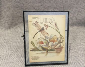 Genuine vintage framed botanical drawing, flower illustrations, botanical print, in glass frame, dragonfly water lily January birthday gift