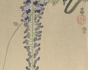 "Japanese Art Print ""Flycatcher with Wisteria"" by Ohara Koson, woodblock print reproduction, fine art, asian art, cultural art, blossoms"