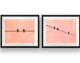"Fine Art Photography Set, Vintage, Sunset, Pink, Sky, Birds, Fine Art Print, Wall Art Decor, Minimalist Photography - ""Birds Silhouette"""
