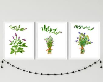 Herb print set, Set of 3 prints, Herbs kitchen art, Herbs kitchen wall décor, Rosemary print, Kitchen decor, basil print, thyme print