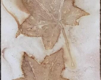 "6""x9"" original art nature print, eco, botanical, leaf, monotype"