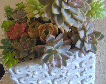 Natural Succulent Arrangement
