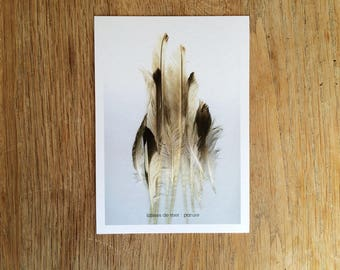"""Water,"" postcard. Ref: LDM - 8"