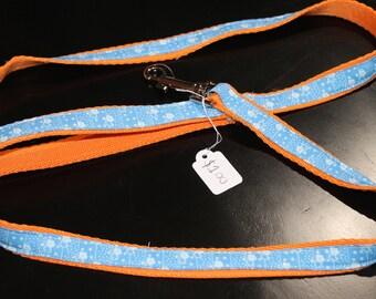 Orange and Blue Leash