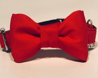 Poppy - Dog Collar with Bow