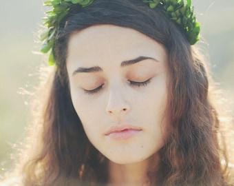 Boxwood crown, Boho wedding crown, Bridal headpiece, Boho hair wreath, Green leaf circlet, Boxwood headpiece, Natural wedding hair