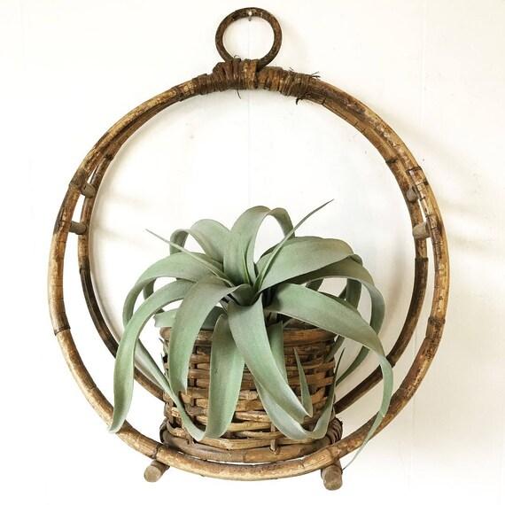 vintage hanging basket planter - bamboo circle plant basket - woven rattan - brown rustic boho