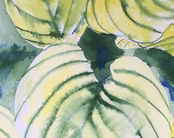 Hosta - Original Watercolor Painting