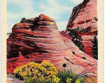 Vintage Utah Postcard - East Entrance to Zion National Park (Unused)