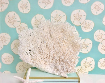 Beach Decor - Large Natural Table Coral - Coastal Decor 35th Anniversary Gift Sea Shells Seashells