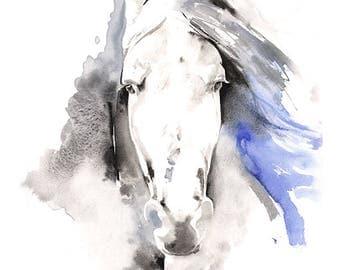 Porträt von ein Pferd Druck 1 Pferdekunst Aquarell Pferd, Aquarell-Pferd-Druck, Pferd Illustration, Pferd-Wand-Kunst, Pferd Porträt