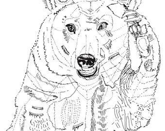 thoughtful kodiak bear illustration art print