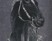 Silver Racer - Vintage 1970s Dufex Foil Print Racehorse Art Postcard