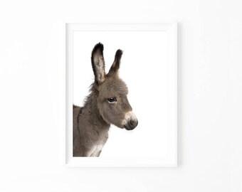 Donkey Art Print, Donkey Printable, Farm Animal Wall Art Digital Download, Baby Shower, Nursery Decor, Boho Art Decor Baby Animals Art docp