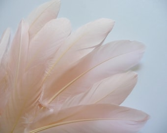 Blush Pink Goose Feathers Dyed Millinery Goose Satinettes Trim for Hats Fascinators Crafts Costumes Set of 12