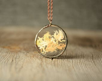 real moss pendant, botanical terrarium necklace, gift for mom, dried moss jewelry, real plant necklace, gift sister, nature inspired