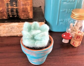 Small Needle Felted Succulent