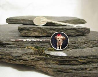 Pet Photo Hair Clips, Pet Photo Hair Barrettes or Pet Photo Hair Pins, Pet Photo Bobby Pins