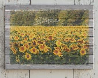 You Are My Sunshine Wall Art, Sunflower Wall Decor; You Are My Sunshine Sign; Sunflower Field Canvas Print; Rustic Sunflower Wall Art