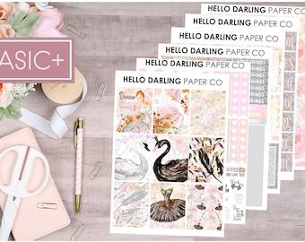 Weekly Kit, Ballerina Kit, Ballerina Stickers, Weekly Planner Kit, Erin Condren Weekly Kit, Glossy Stickers, ECLP, EC Planner, K053
