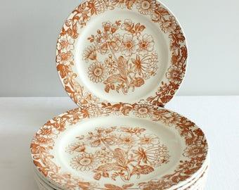 SALE Vintage Transferware Broadhurst 'Richmond' Floral Print Dinner Plates, Set of 7, Ironstone, Made in England, Brown Retro Folk Flowers