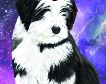 Hand-drawn Bearded Collie puppy greeting card, on a purple/pink/green background, white background or blue background