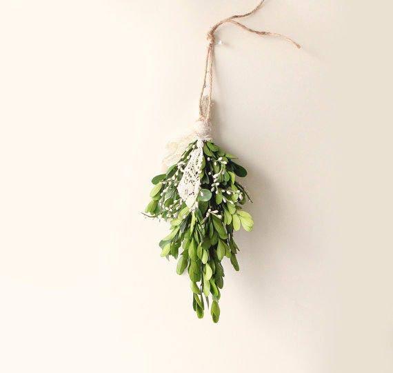 Boxwood mistletoe gift bundle
