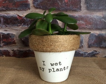 Plant pot gift 'I wet my plants' indoor novelty comedy funny planter- for succulents/cactus/plants