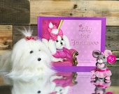 Children's Book - Stuffed Animal - Gift Set - Toy Set - Storytime - Picture Book - Book for Kids - Lily the Fancipoo - Signed by the Author