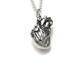 Sterling Silver Small Anatomical Heart Necklace, Anatomy Jewelry