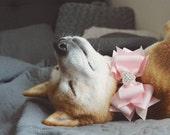 Bow dog collar, rhinestone dog collar, small, medium & large, Removable bow dog collar, fancy dog collar, pink dog collar