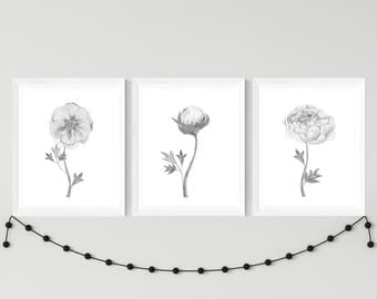 Peonies printable art set, black and white, watercolor flowers, printable peonies wall decor, watercolor wall art, home decor Download