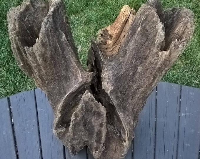 Extra Large Driftwood Stump Landscape Yard Art Garden Decoration. Hardwood Hollow. Ships Free. 112