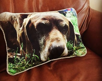 custom velvet cushion pets dogs children any photo complete with  ,piped with inner' personalised