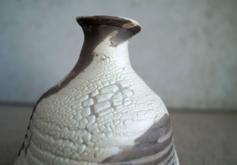 Handmade ceramic vase unique raku firing vase ceramic art object handmade ceramic vase unique raku firing vase ceramic art object unique lizard skin raku glaze crackle texture wheel thrown pottery reviewsmspy