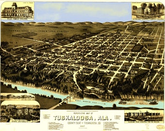 Tuskaloosa Alabama Map dated 1887.. This print is a wonderful wall decoration for Den, Office, Man Cave or any wall.