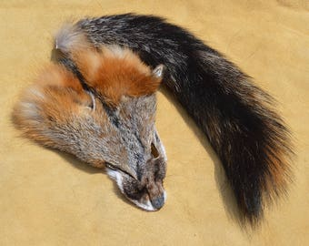 Tanned Grey Fox Face and Tail - Tiny Tail - Salvaged Fur