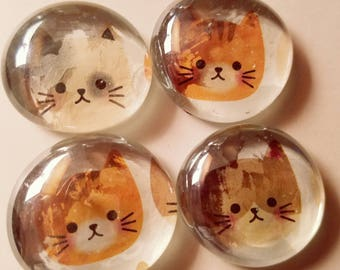 Pretty kitty Marble magnets