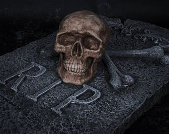 Human skull lifesize replica