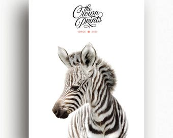 Zebra print, The Crown Prints, Safari nursery art, Nursery decor, Gender neutral baby gift, Baby shower decor, Safari nursery prints