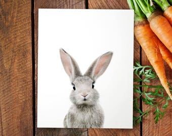 Bunny print, PRINTABLE art, Animal print, Baby rabbit print, Nursery decor, Animal art, Baby animals, Nursery wall art, The Crown Prints