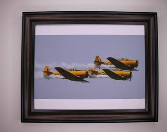 8 x 10 Harvard Airplane Print