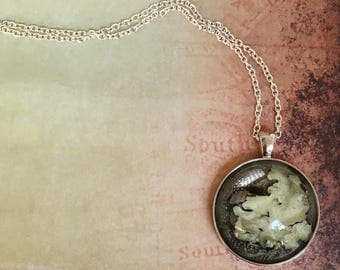 Lichen Cabachon Pendant - Silver Chain Necklace - Nature Inspired Necklace