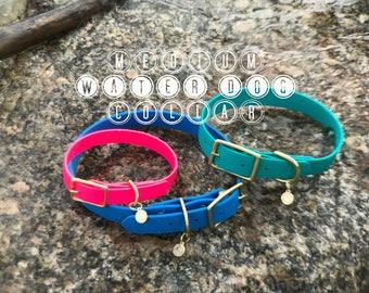 "MEDIUM 3/4"" Water Dog Buckle Collar, waterproof, dirt resistant, leather free"