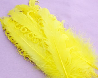 Yellow Curled Duck Feathers. (5) Curled Craft Feathers. Long Yellow Feathers with Curled Ends for Making Hats. Yellow Bird. 6-8 Inches
