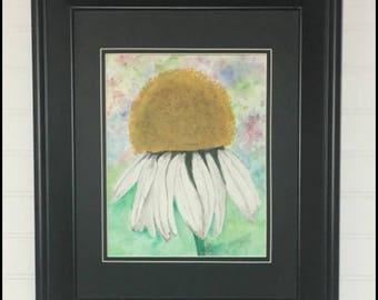 coneflower in White