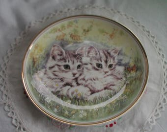 Royal Vale Fine Bone China Cat Plate Collectors Plate