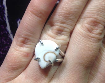 Sterling Silver Shiva Shell Ring