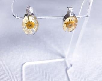 Daisy Earrings;Pressed flower Earrings;Daisies;Real Flower Earrings;Flower Earrings;Flower Studs;Resin Flower Studs;Resin Flower Earring