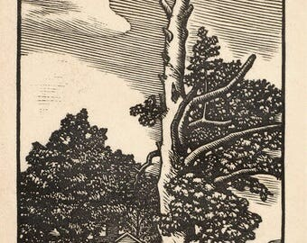 J.J. Lankes Original Pencil Signed Woodcut Sycamore Tree Robert Frost 1928 Small Edition